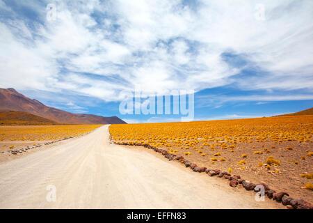 El paisaje de la Cordillera de Los Andes, en el camino hacia la meseta de lagunas. Región de Antofagasta, cerca de San Pedro, en el norte de Chile.
