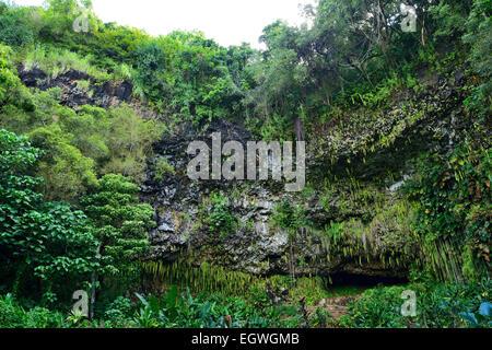 Fern Grotto en Wailua River State Park, Kauai, Hawaii, EE.UU.