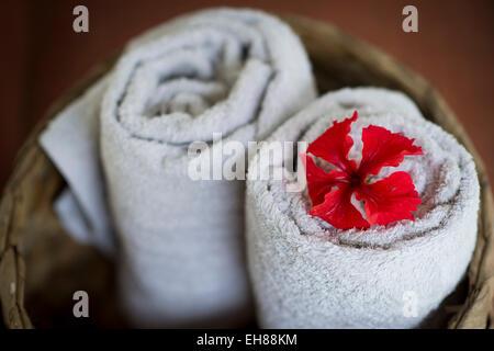 Dos toallas blancas laminadas en una canasta, flor de hibiscus rojo, Spa ayurvédico, Kerala, India