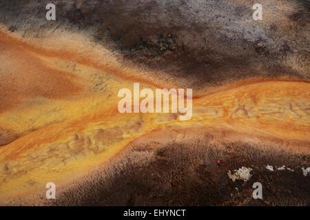 Mat bacteriana, Grand Prismatic Spring, el Parque Nacional Yellowstone, Wyoming, EE.UU.