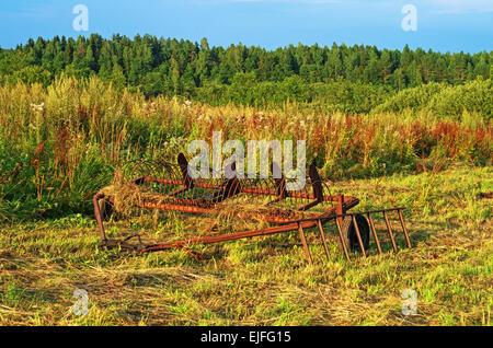 Paisaje rural - hierro rake-Remolque para tractor sobre pradera.