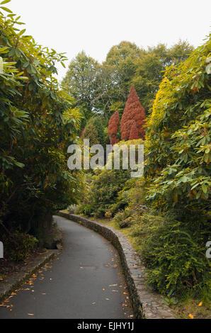 Sendero en Tollymore Park, Irlanda del Norte Foto de stock