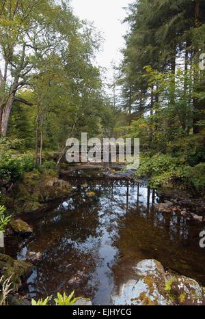 Uno de los 16 puentes que cruzan el río Shimna en Tollymore Park, Irlanda del Norte