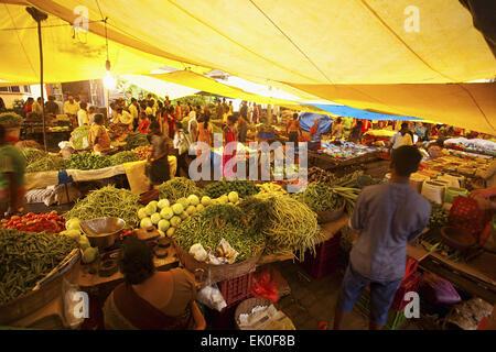 Mercado Banastari, norte de Goa, India