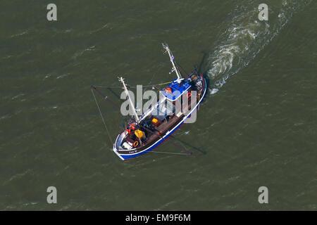 Vista de pájaro del camarón azul barco arrastrero la pesca de camarones en el mar