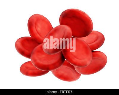 Los glóbulos rojos aislado sobre fondo blanco.