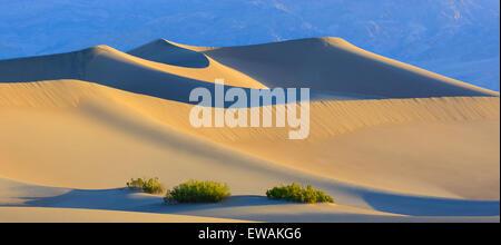 Amanecer en el Mesquite Flat dunas de arena en el Parque Nacional Valle de la Muerte en California, EE.UU.