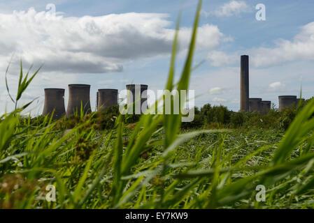 Fiddlers Ferry power station vistos a través de la vegetación alto UK
