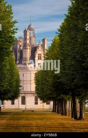 Temprano en la mañana en el Chateau de Chambord, Loir-et-Cher, Centro, Francia