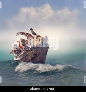 Animales salvajes y pájaros en un viejo barco