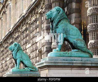 Porte des Lions, Musée du Louvre, París, Francia, Europa