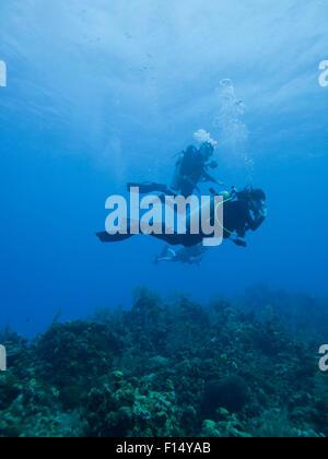 La gente submarina de buceo