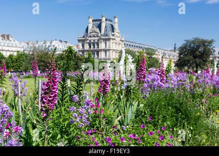 La primavera en París: cama con flores y foxglove - flores en el jardín con Tuilleries Louvre en la distancia