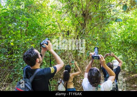 Costa Rica, provincia de Puntarenas, el Parque Nacional Manuel Antonio, los turistas observación de animales