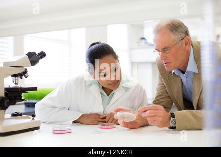 Empresario y científico examinar muestras en laboratorio