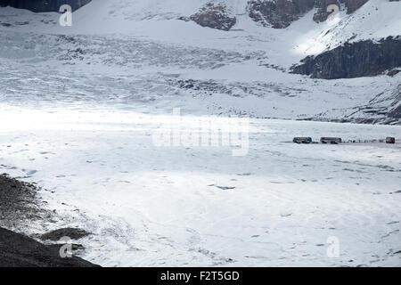 Brewster entrenadores nieve transportar turistas en el glaciar Athabasca, en las Montañas Rocosas, Alberta, Canadá, Foto de stock