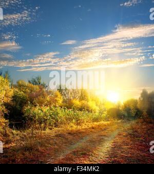 Country Road en el colorido bosque de otoño Foto de stock