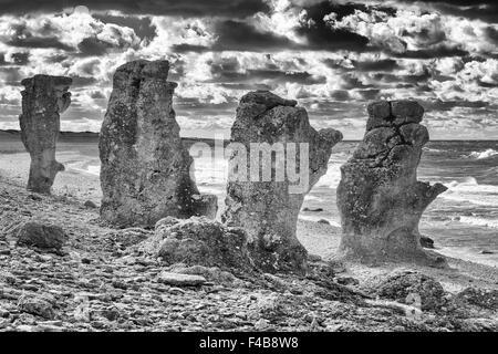 Rocas calizas, Gotland, SUECIA