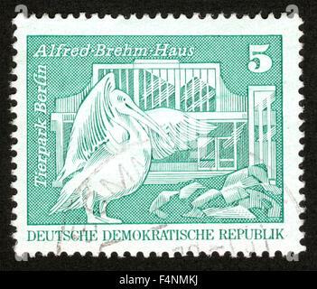 Alemania, 1973, Pelican, el Zoo de Berlín, sello,