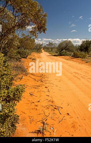 Roja larga carretera de arena, rodeado por bosques nativos, extendiéndose a Horizon & blue sky en Mungo National Park en el outback Australia