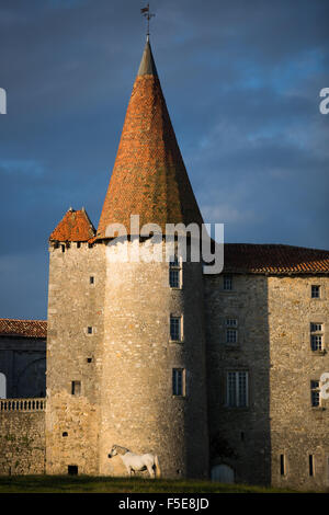 Chillac Chateau, la Charente, Francia, Europa