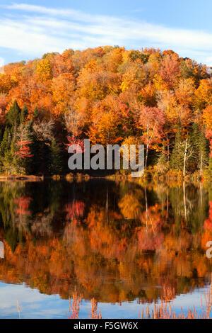En el otoño de Nueva Inglaterra, la reflexión de los árboles en el lago, estanque de Belvedere el condado de Lamoille, Foto de stock