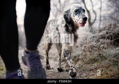 Las piernas de una mujer adulta media paseando a un perro en la ruta helada
