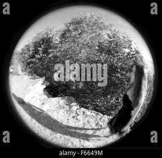 Fisheye lente fotografía en blanco y negro de una figura de acantilado con árboles en el fondo abstracto.