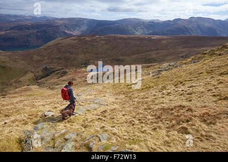 Un excursionista y su perro caminando por la cumbre de Dale Cabeza con alta Spy en la distancia, English Lake District, Reino Unido.