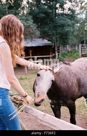 Mujer alimentando a un caballo en un prado. Foto de stock