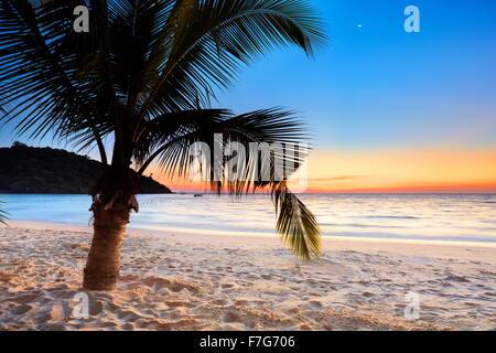 Después de la puesta de sol, playa tropical de la isla de Ko Samet, Tailandia