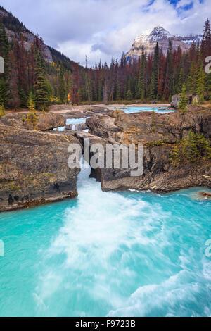 Río Kicking Horse en el Puente Natural, el Parque Nacional Yoho, British Columbia, Canadá.
