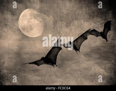 Los murciélagos en el oscuro cielo nublado, perfecto de fondo de Halloween