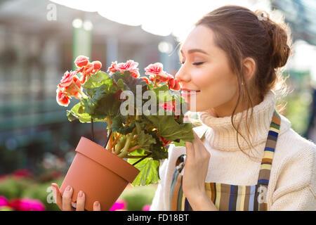 Inspirado sonriente joven florista oliendo flores de begonia en invernadero