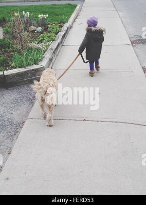 Vista trasera de la niña caminando con el perro en el parque