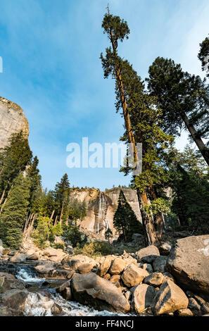 Río Merced con Nevada caída, vapor Trail, el Parque Nacional Yosemite, California, EE.UU., América del Norte