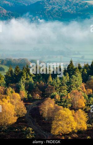 Colores de otoño nr Webber Post, Holnicote Estate & la Iglesia en Selworthy, Exmoor National Park, Somerset, Inglaterra, Foto de stock