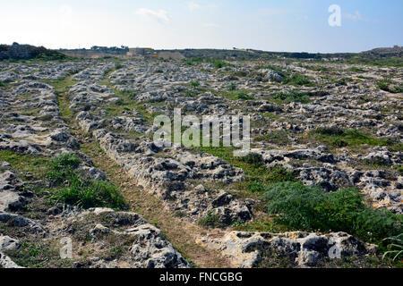 Carrito roderas en Malta.