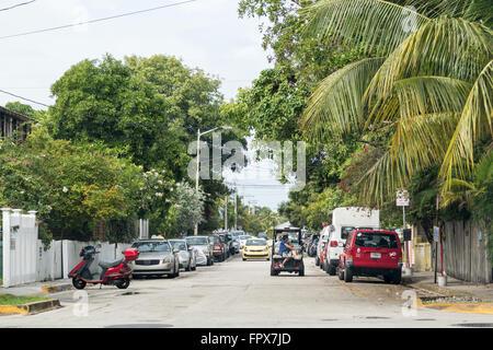 Escena de una calle con el tráfico y los coches aparcados en Key West, Florida Keys, EE.UU.