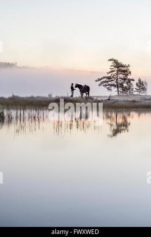 Suecia, Vastmanland, Bergslagen, Hallefors, Bovik Grythyttan, joven, de pie, con el caballo en la orilla del lago Foto de stock