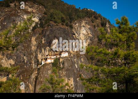 Vista a través de los pinos a Tiger's Nest (Monasterio de Taktshang), encaramada sobre un acantilado cerca de Paro, Bhután