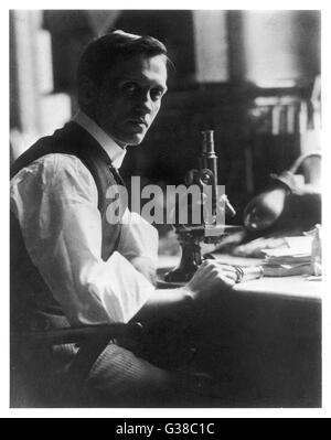 SIR ALEXANDER FLEMING, bacteriólogo Escocés en su escritorio con su microscopio. Fecha: 1881 - 1955 Foto de stock