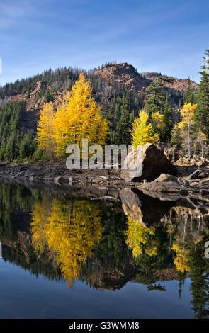 WASHINGTON - La caída de color en los árboles a lo largo de la orilla, reflejando en las aguas tranquilas del lago Eightmile lagos alpinos en el desierto. Foto de stock