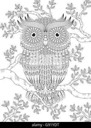 Página para colorear de adultos con precioso búho en el árbol Foto ...