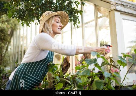 Mujer rociado de agua sobre las plantas.