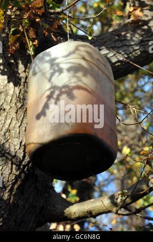 Un recipiente de plástico para el agua cuelga de un árbol detrás del jardín trasero donde vive Delroy Grant, de 52 años, de Brockley, al sudeste de Londres, que compareció en el Tribunal de Greenwich esta mañana, donde está acusado de agredir sexualmente a personas mayores durante una serie de robos durante los últimos 17 años.