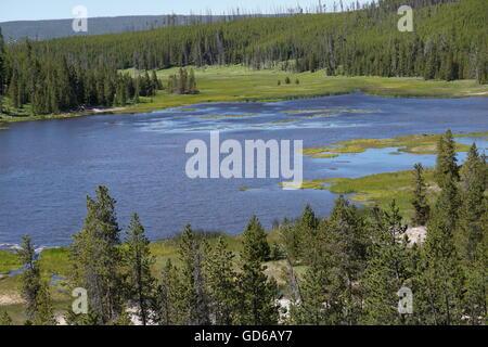 Lago de montaña con lirios de agua amarilla, el Parque Nacional de Yellowstone.