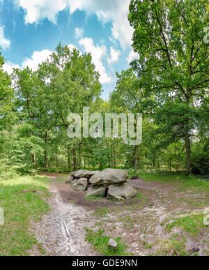 Annen,Drenthe,tumba megalítica en la silvicultura Schipborg