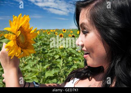 Una morena guapa joven mujer en un campo de girasol sosteniendo un girasol.