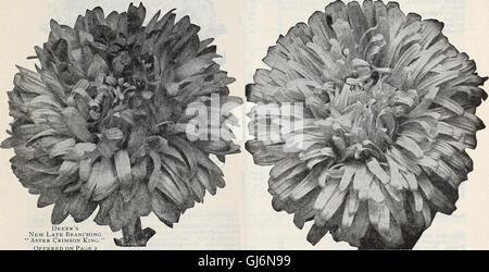 Lista de precios al por mayor del Dreer spring edition Abril de 1910 Junio - plantas de semillas y bulbos para floristas, fertilizantes, insecticidas, herramientas, artículos, etc (1910)